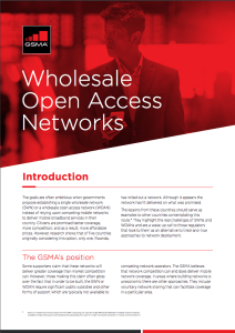 The risks associated with Single Wholesale Networks image
