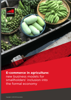 E-commerce in agriculture: new business models for smallholders' inclusion into the formal economy image