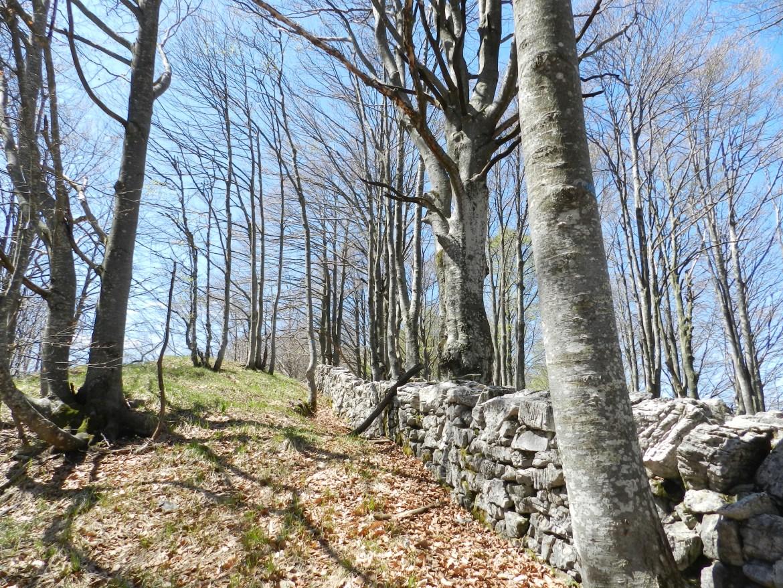 Monte Taiet