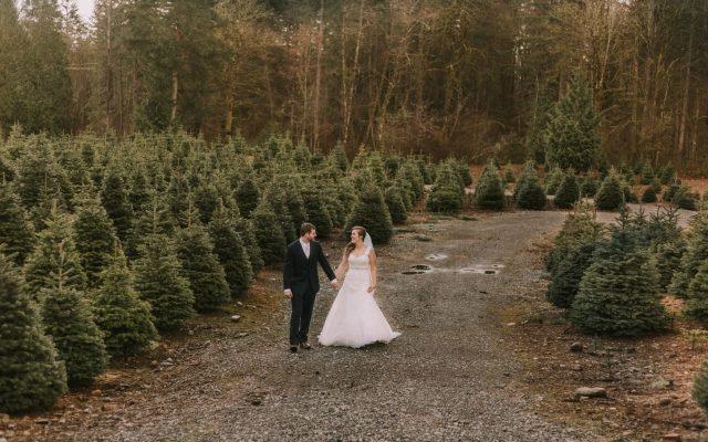 worth the wait | a trinity tree farm wedding in issaquah wa