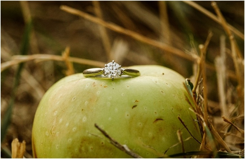 snohomish wedding photo 6159 by GSquared Weddings Photography