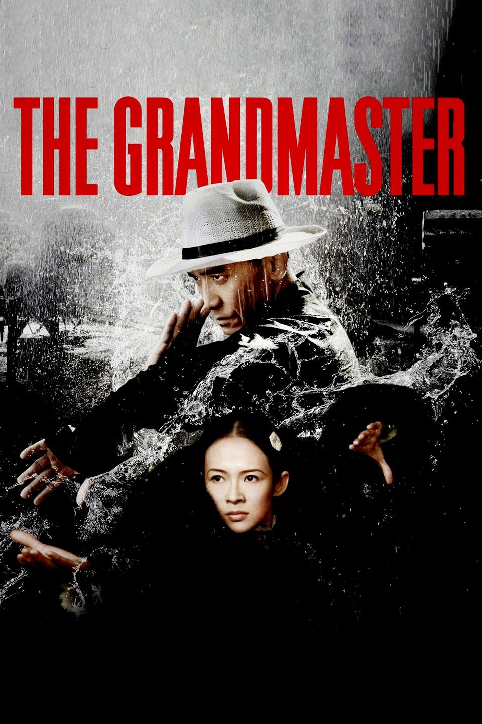 Image result for the grandmaster