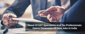GST Specialists and Tax Professionals