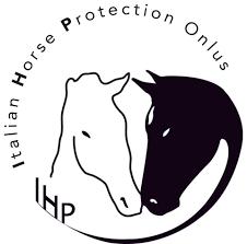 Toscana-Italian-Horse-Protection