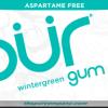 PUR Gum Aspartame Free Wintergreen Sugar Free All-natural Flavors Allergen Free Vegan Non-GMO