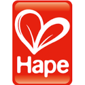 hape-logo | Games, Toys & More | Spielefachhandel in Linz