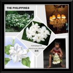 National Flower Series - South East Asia 5- Philippines