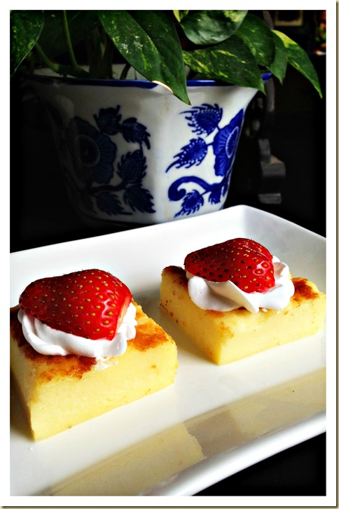 Easy Peasy Baked Custard Slices (烤吉士甜品,烤蛋奶甜品)