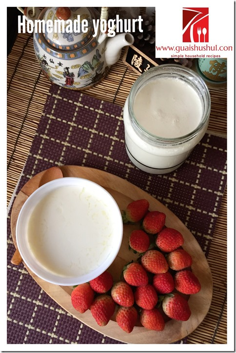 Homemade Yoghurt (家居自制酸奶)