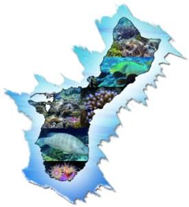 guamreeflife.com island image mosaic