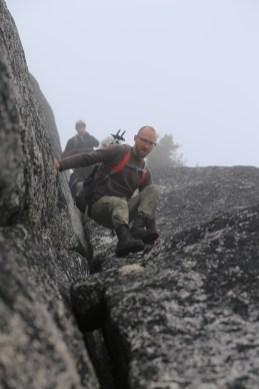 Downclimbing Markhor