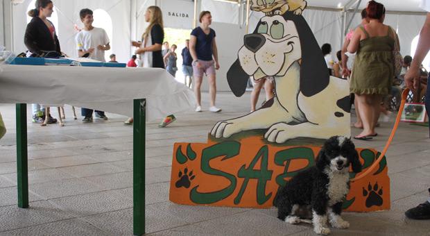 Ozzy con el logotipo protectora sara