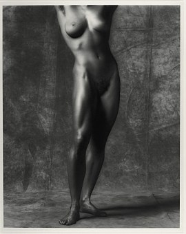 Robert Mapplethorpe, Lisa Lyon, 1981. Gelatin silver print, 19 1/16 x 15 3/16 inches (48.4 x 38.6 cm)