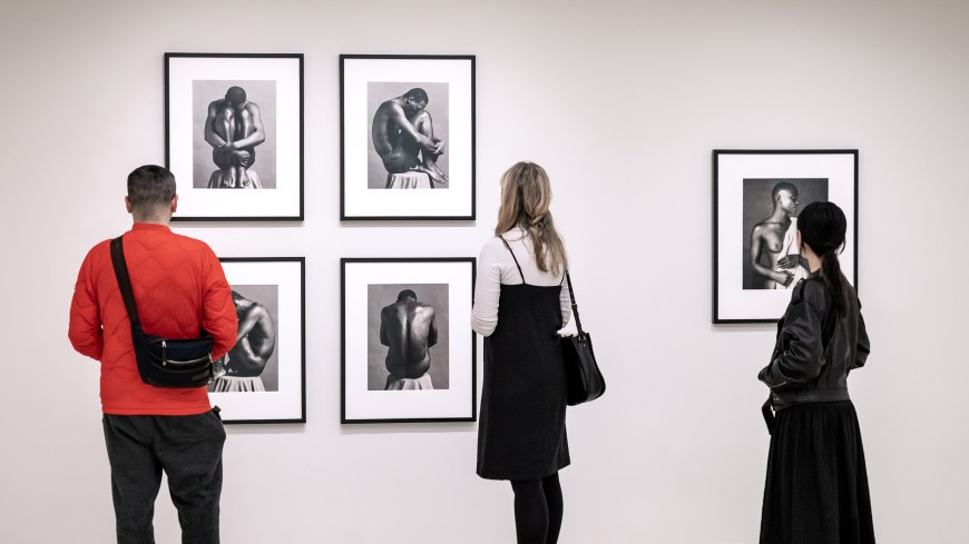 Exhibition Stand Galleries : Implicit tensions: mapplethorpe now