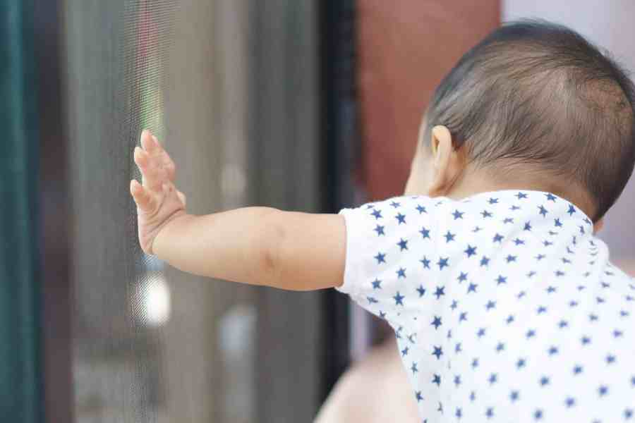 Bebê encostando em mosquiteiro