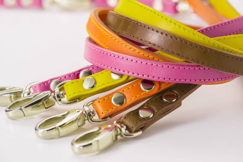 Colorful collars.