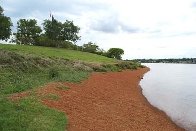Lago paranoá, Praia do Cerrado