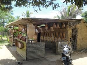 Aldeia indígena a caminho da Praia do Espelho