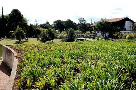 Jardim Botânico de Brasília - Foto: Dênio Simões/Agência Brasília