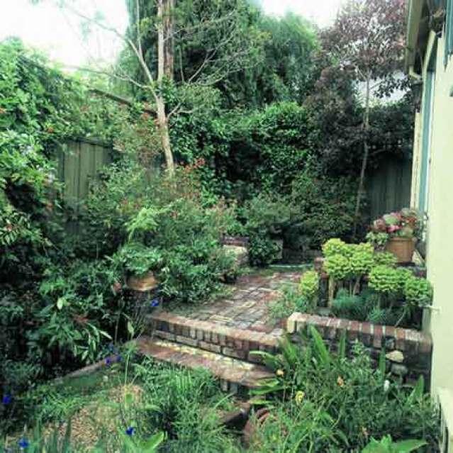 Giardino con vegetazione fitta
