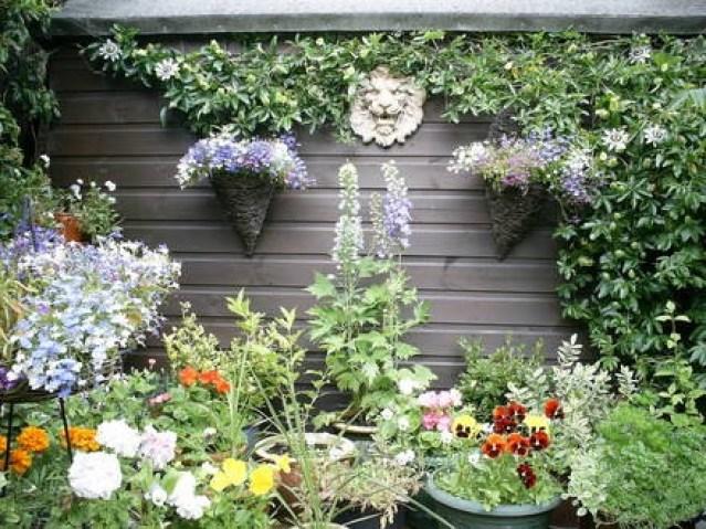 vasi e piante rampicanti a decorazione di una serranda