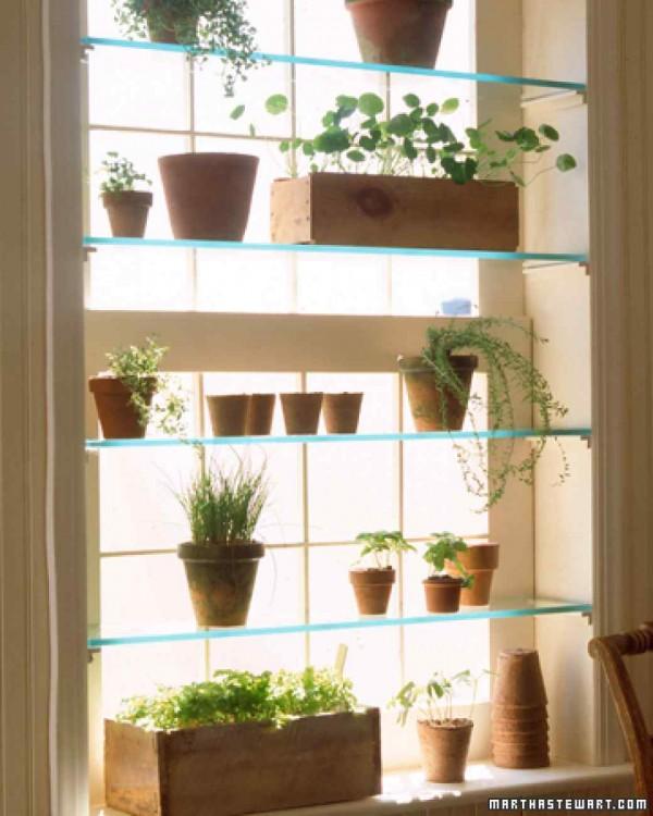 realizzare una piccola serra in casa sfruttando lo spazio di una finestra