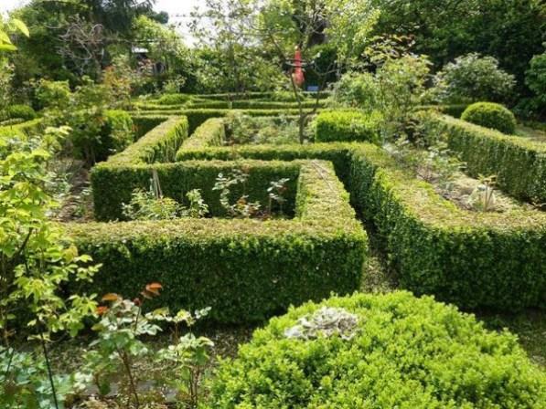 creare un labirinto di piante