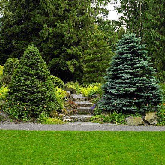 15 idee per abbellire il giardino | guida giardino - Come Abbellire Il Giardino Di Casa