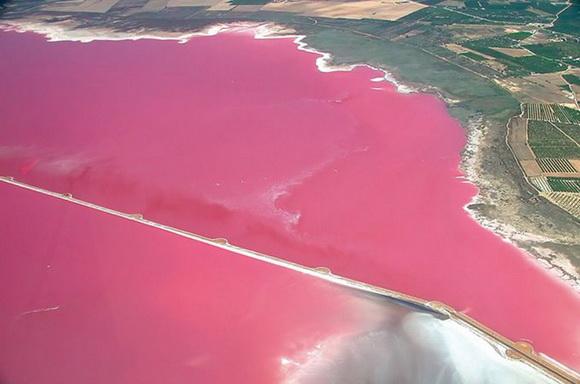 Un lago rosa en España  - Torrevieja_9557_IGLg1