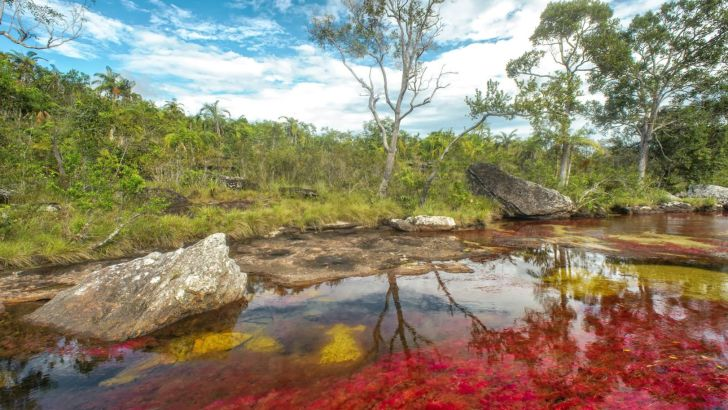 El río más hermoso del mundo, o el arco iris que se derritió