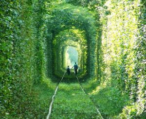 Paseando por el túnel del amor - el-tunel-del-amor-8-300x246