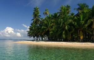 La Playa de las Estrellas - bocas-de-drago-2-300x193