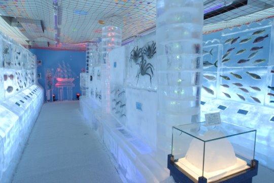 El acuario de hielo de Kori No Suizokukan