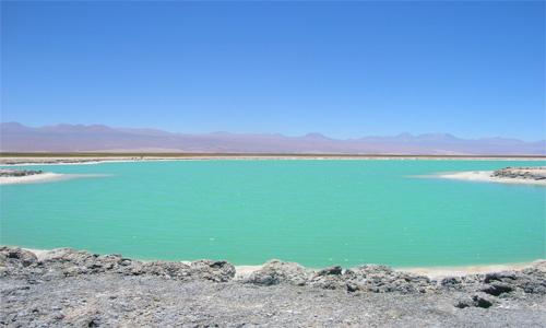 Laguna Cejar, el Mar Muerto de Atacama