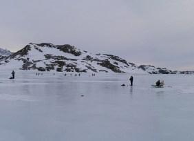 Tasiilaq (Groenlandia). - Trineos-300x217