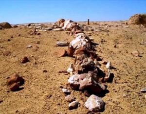 El valle de las ballenas - Wadi-Al-Hitan-Whale-Valley-Egypt-300x233