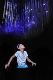 Cuevas Waitomo - large-glowworms-200x300