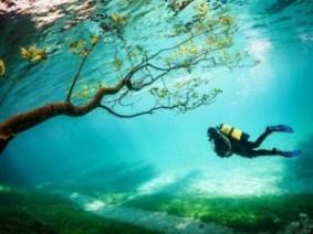 Grüner See (Austria) - scuba-diver-tragoss-austria_79797_990x742-300x225
