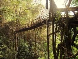 Cherrapunji: el lugar más lluvioso del mundo. - Sin-título-300x226