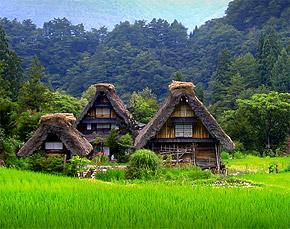 Shirakawa-go y Gokayama