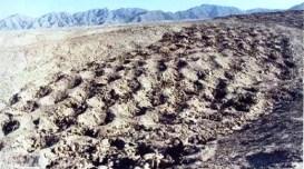 La extraña banda de agujeros de Nazca - extensa-banda-de-miles-de-agujeros-inexplicables-en-Perú-300x167