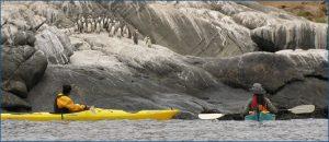 Monumento Natural Isla Cachagua - PO-Viajes-300x130
