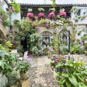 10 patios cordobeses que no te puedes perder - Patio-calle-de-las-parra-6-300x300