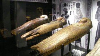 Inicio - Museo-Egipcio-de-Barcelona