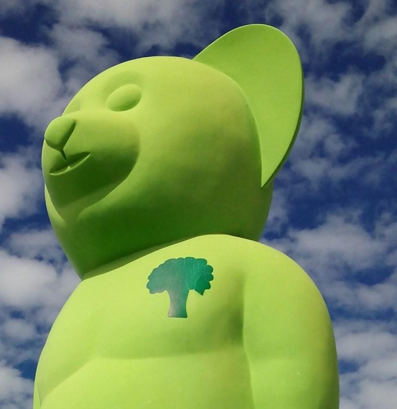 El Oso Verde - Árbol donde el corazón del oso verde