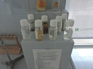 Museo Veterinario Complutense - Colección de parásitos de animales domésticos.