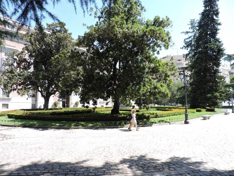 Jardín Botánico Madrid - Plaza de Murillo.