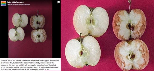 Una profesora explica con manzanas qué es el bullying