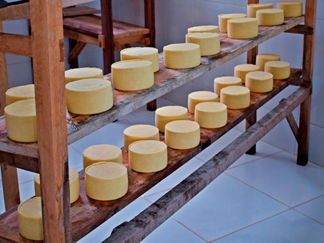 Universidades desenvolvem embalagem comestível para o queijo Minas artesanal