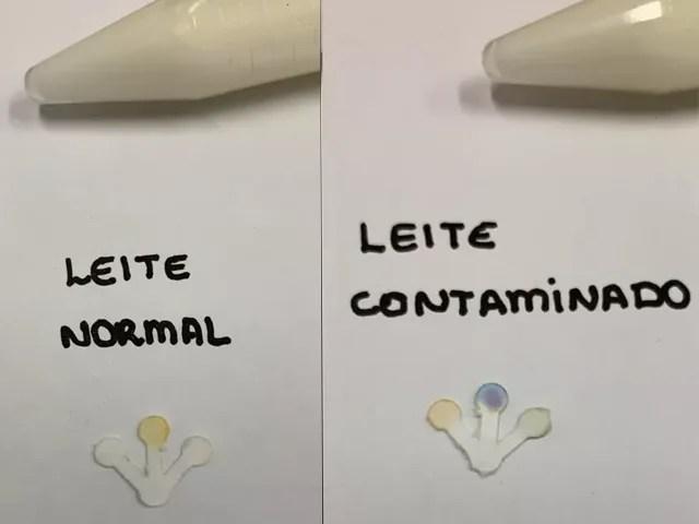 Pesquisadores da UFG desenvolvem sensor que identifica presença de adulterantes em leite